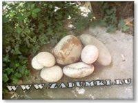 Божьи коровки из камней (hand made)