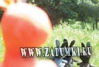 Сумка для пикника с зайцем