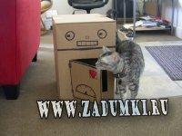 Домик-робот для кошек