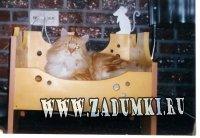 Кроватка для кошки (hand made)