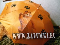 Гарфилд - зонтик