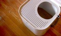Современный кошачий туалет
