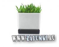 Минималистичные черно-белые горшки от Sportmax and BODUM