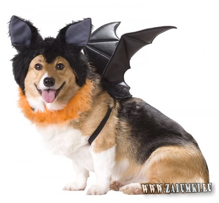 Костюмы собак на Хеллоуин