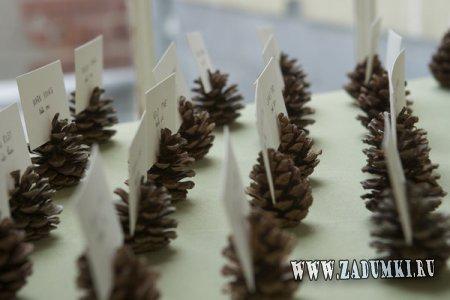Подставки под карточки для рассадки гостей… из шишек
